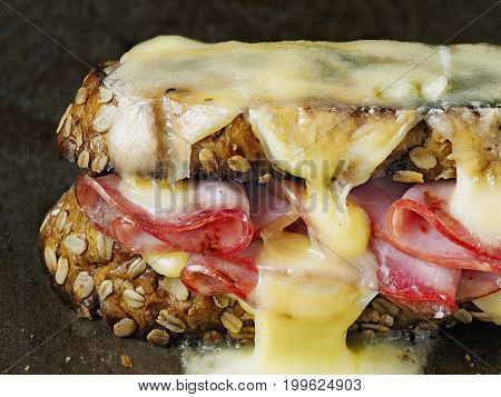 close up of rustic french sandwich croque monsieur