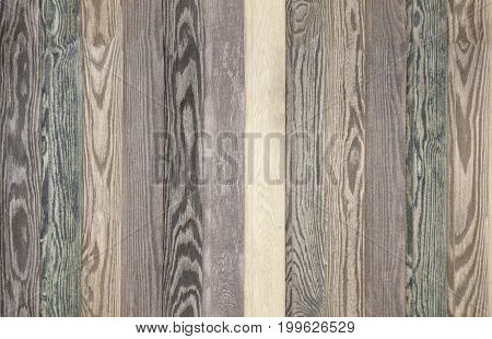 Colorful Wood Background Planks. Seamless Timber Ivory Texture Floor