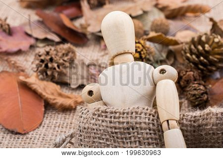 Wooden dolls posing amid autumn background setting