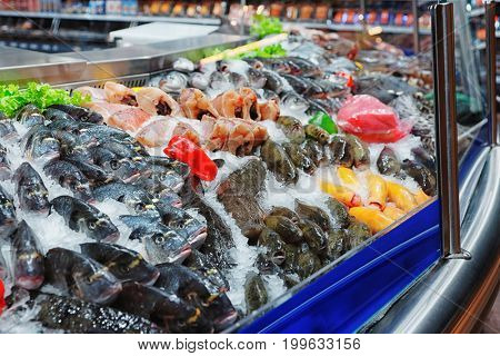 Great variety of fish and seafood on iced supermarket stall, toned image