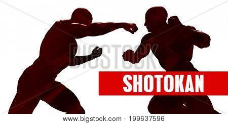 Shotokan Class with Silhouette of Two Men Fighting 3D Illustration Render