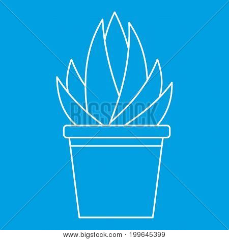 Aloe humilis plant icon blue outline style isolated vector illustration. Thin line sign