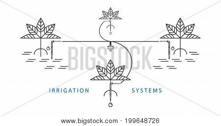 Drip irrigation system. Line style vector illustration.