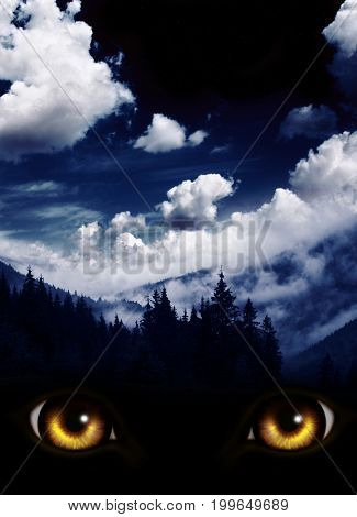 Dark series - a look from darkness. Yellow monster eyes and mysterious landscape of foggy mountain and night sky