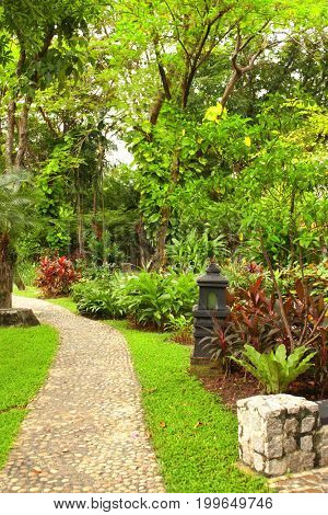 Paving road and a lantern in an ornamental tropical garden