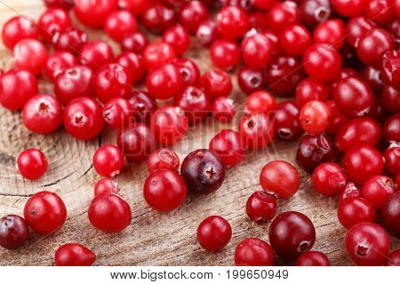Raw cranberries are scattered on a wooden background the preparation of vitamin dishes with cranberry