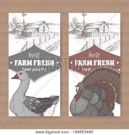 Set of two farm shop labels with farmhouse, barn, color goose and turkey on white. Includes hand drawn elements.