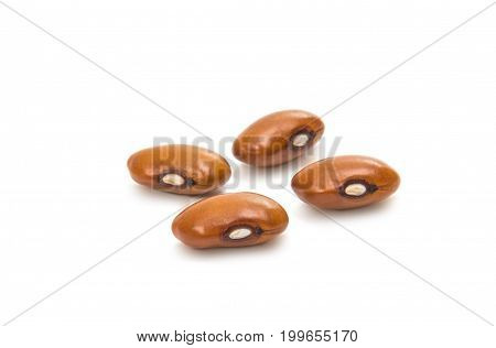 Yellow kidney bean isolated on white background. Yellow kidney bean texture background. A large bean with a subtle sweet flavor and soft texture. Beans. Proper nutrition. Vitamins. Healthy food.