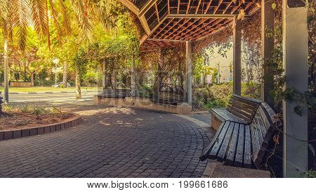 View To Golda Meir Street From Beautiful Sidewalk Pergola