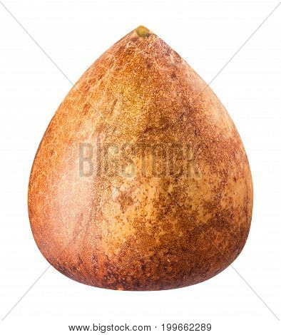 Ankle Of Avocado Isolated On White Bsckground