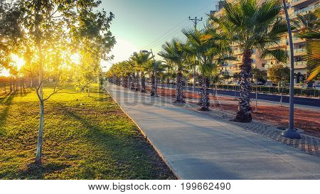 Empty concrete paved sidewalk at early morning. In the left there are green lawn and trees flooded by sunrise. In the right there are palms asphalt road and multi-story condominiums. Horizontal shot