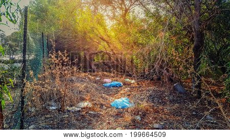 Garbage comprising used blue plastic bags paper and other waste lie on dry grass in the woods belt nearby Moshe Dayan Boulevard. Horizontal shot.