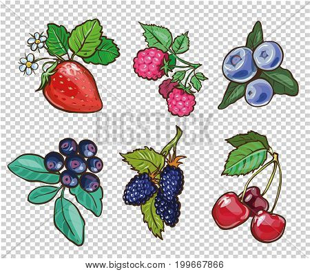 Big collection of hand drawn berries. Vector illustration stock
