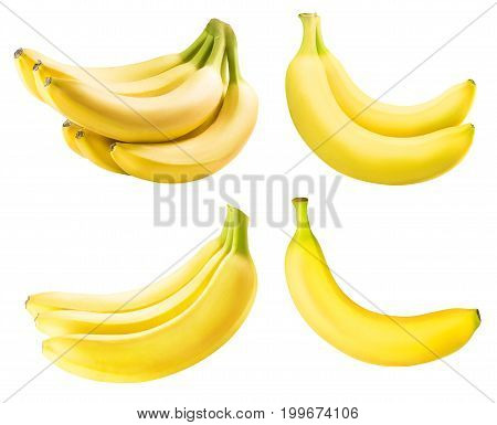Set from bananas isolated on white background with clipping path