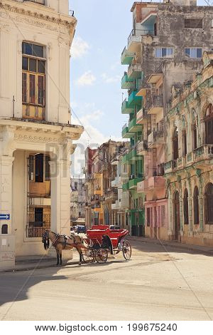 Horse with red brougham stands on sunny street of old Havana.