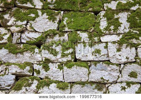 Mossy stone bricks white texture background ruinned