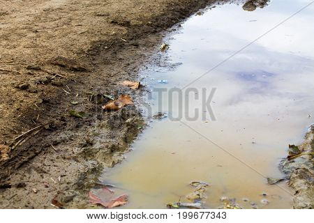 Puddle of water in the earth with reflection of the sky and clouds