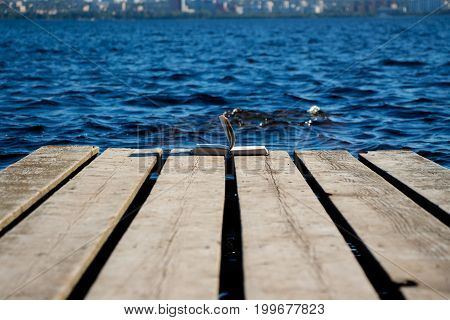 The book lies on the edge of the pier, on a wooden surface against a clear lake