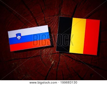 Slovenian Flag With Belgian Flag On A Tree Stump Isolated