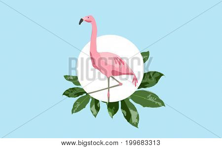 fauna and birds concept - pink flamingo over blue background with green leaves
