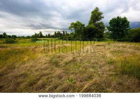 Summer scene with steppe before thunderstorm