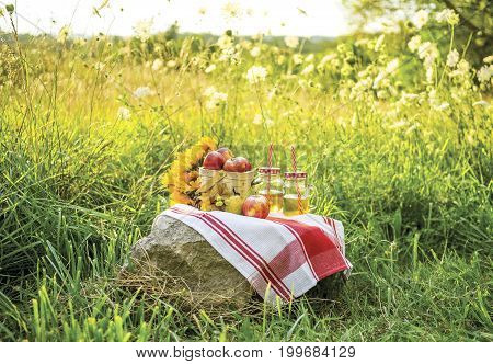 Afternoon Picnic Of Autumn Apples, Juice And Sunflowers On A Red And White Cloth