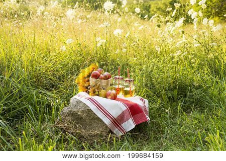 Simple Autumn Country Picnic In A Field Of Grasses And Wild Carrot Flowers. Basket Of Apples And App