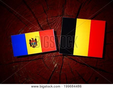 Moldovan Flag With Belgian Flag On A Tree Stump Isolated