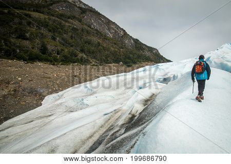 The tourist climbs the glacier with a stick. View of the glacier and the forest on the mountain.