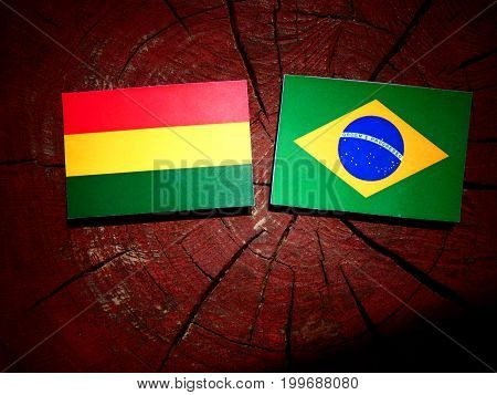 Bolivian Flag With Brazilian Flag On A Tree Stump Isolated