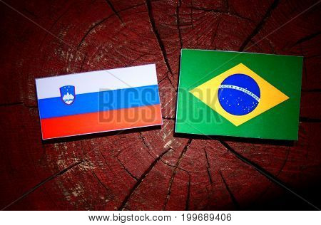 Slovenian Flag With Brazilian Flag On A Tree Stump Isolated