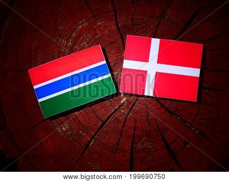 Gambian Flag With Danish Flag On A Tree Stump Isolated