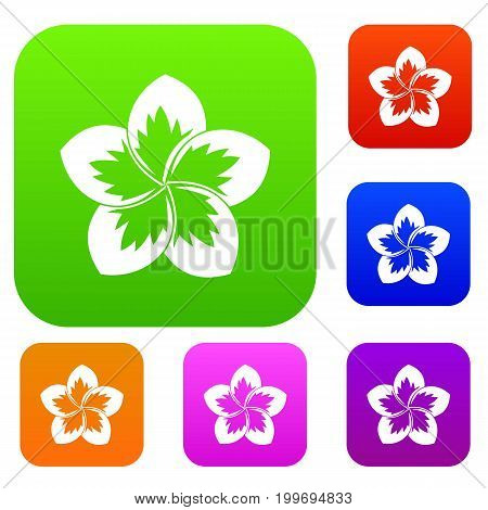 Frangipani flower set icon in different colors isolated vector illustration. Premium collection