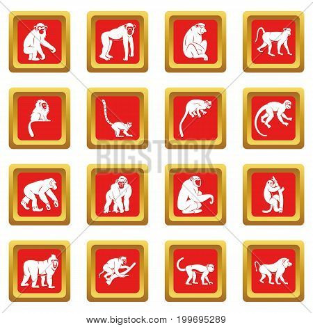 Monkey types icons set in red color isolated vector illustration for web and any design