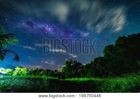 Blue Night Starry Sky Above Countryside And Green Field.  Night View Of Natural Milky Way Glowing St