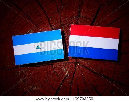 Nicaraguan Flag With Dutch Flag On A Tree Stump Isolated