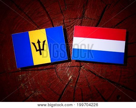 Barbados Flag With Dutch Flag On A Tree Stump Isolated