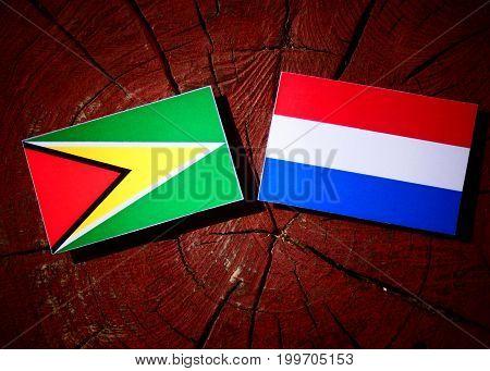 Guyana Flag With Dutch Flag On A Tree Stump Isolated