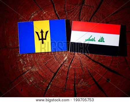 Barbados Flag With Iraqi Flag On A Tree Stump Isolated