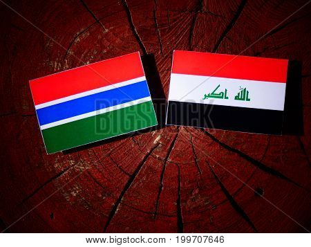 Gambian Flag With Iraqi Flag On A Tree Stump Isolated