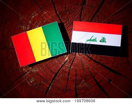 Guinean Flag With Iraqi Flag On A Tree Stump Isolated
