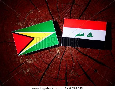 Guyana Flag With Iraqi Flag On A Tree Stump Isolated
