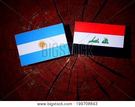 Argentinian Flag With Iraqi Flag On A Tree Stump Isolated