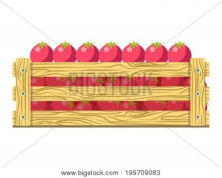 Ripe fresh tomatoes with green leaves in wooden box isolated cartoon vector illustration on white background. Organic vegetables folded in container for sale. Healthy natural product grown at farm.