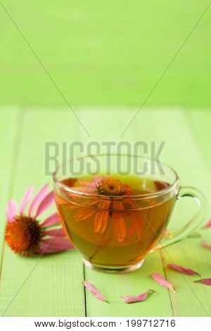 Cup of echinacea tea on green wooden table with copy space for your text.