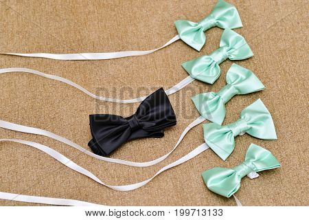 wedding accessories. groom and groomsman bow tie details