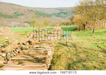 Timber logs on a lumberyard out in the fields