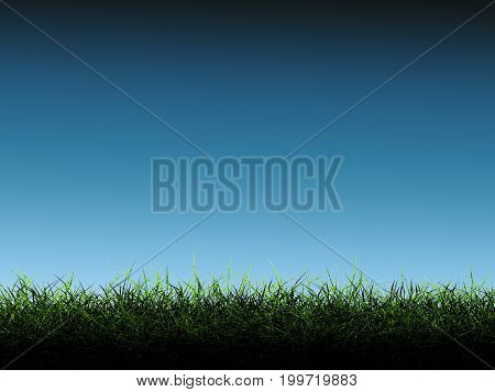 3d rendering green grass with blue background