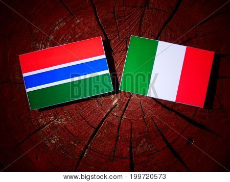 Gambian Flag With Italian Flag On A Tree Stump Isolated