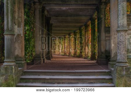 Catherine Park Pushkin . Own garden. Pergola. St. Peterburg